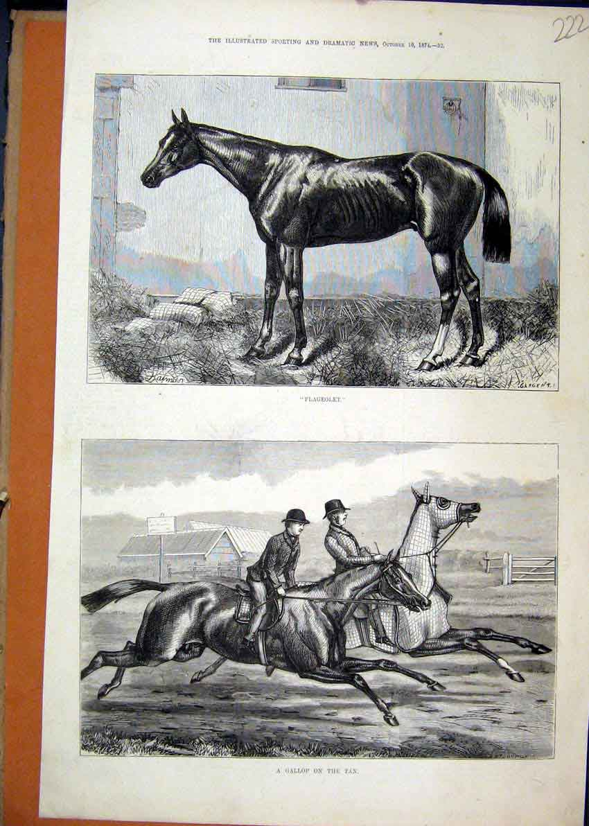 Print 1874 Horse Flageolet Gallop Racing Country Scene 22Mar1 Old Original