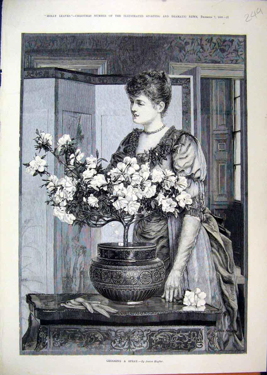 Print Woman Flower Arranging Table Screen 1889 49Mar1 Old Original