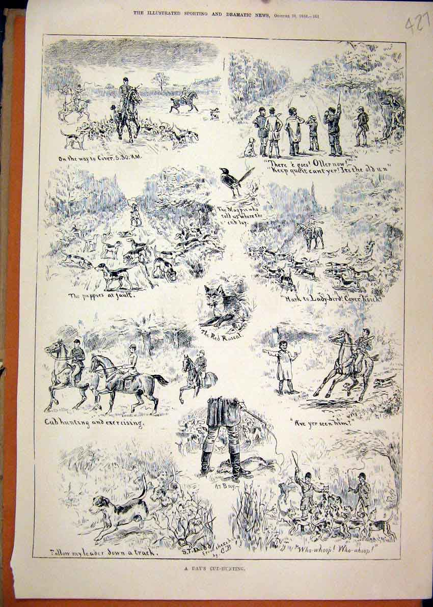 Print 1880 Cub-Hunting Horse Hounds Fox Running 27Mar1 Old Original