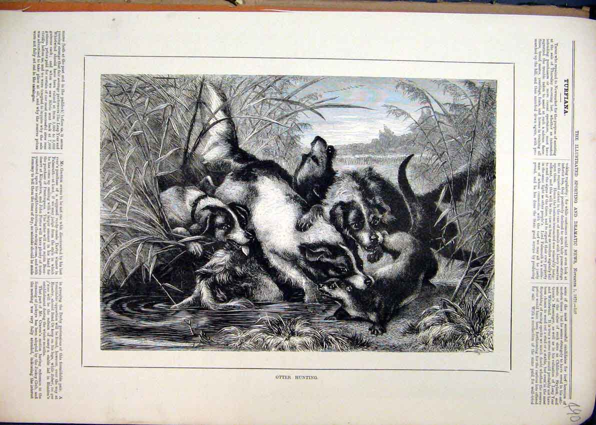Print Country Scene 1879 Otter Hunting River Dogs Attacking 90Mar1 Old Original