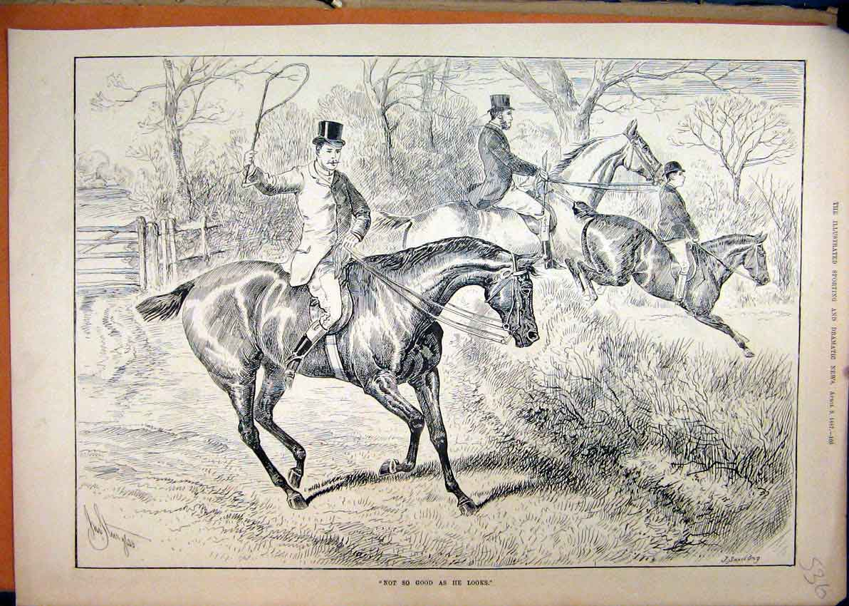 Print 1887 Country Scene Horse Jumping Hedge Refusing 36Mar1 Old Original