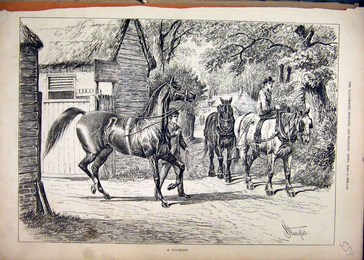 Print 1878 Country Scene Horses Men Rider Trees 59Mar1 Old Original