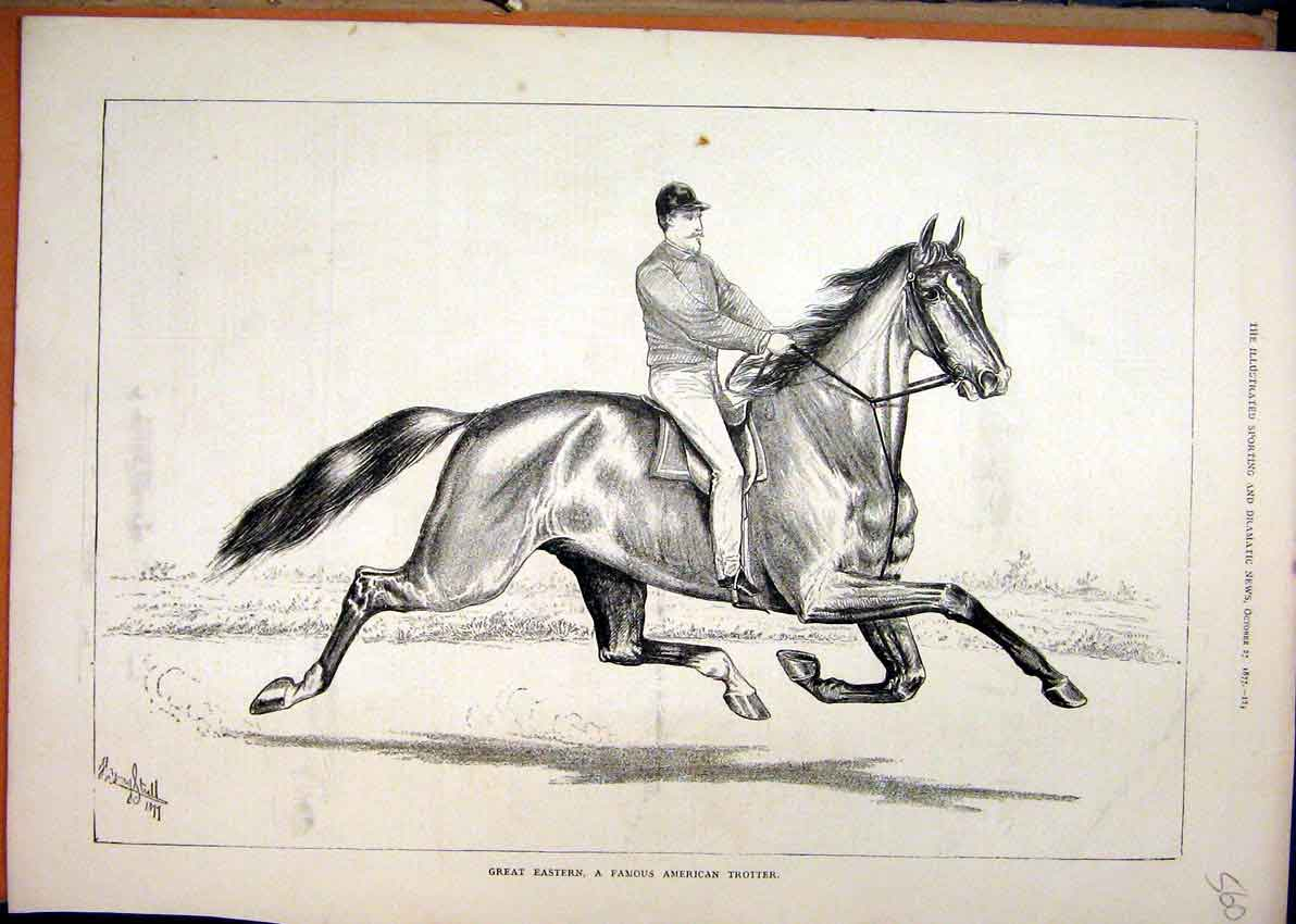 Print Great Eastern Horse Famous Trotter Man 1877 60Mar1 Old Original
