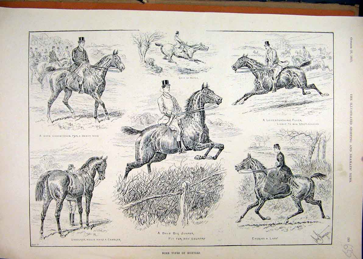 Print 1895 Horses Hunters Jumping Water Undocked Tail 35Mar1 Old Original