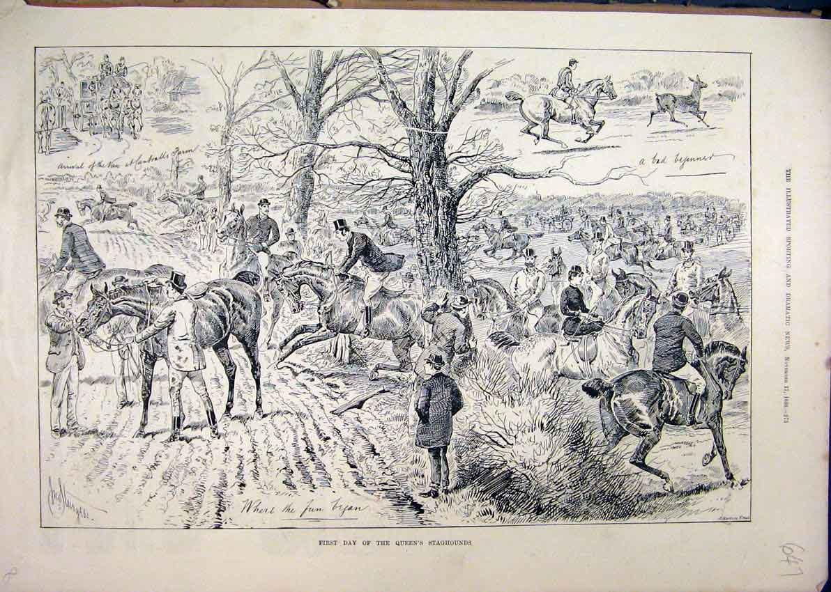 Print 1888 Queen Staghounds Horses Jumping Trees Country 47Mar1 Old Original