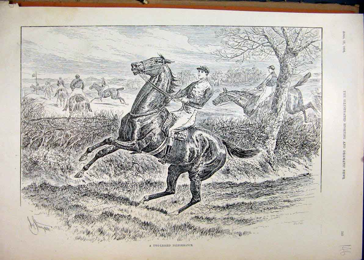 Print 1896 Horse Jumping Refusing Fence Country Scene 46Mar1 Old Original