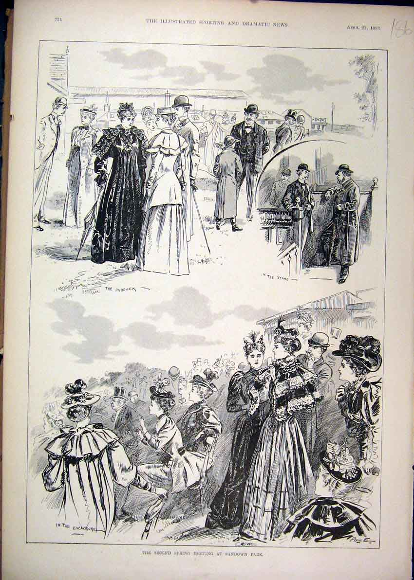 Print 1893 Spring Meeting Sandown Park People Paddock Stand 86Mar1 Old Original