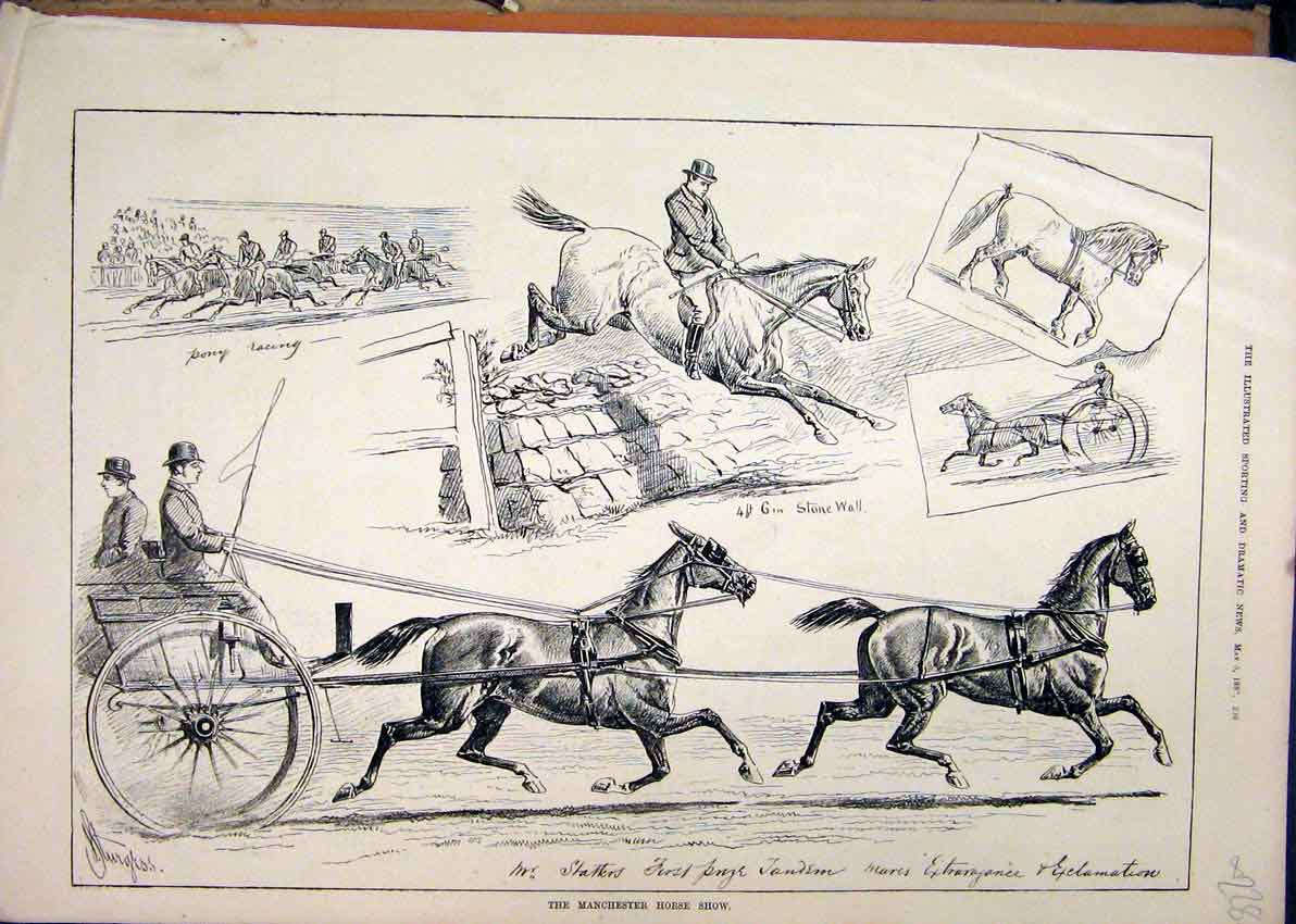 Print 1880 Manchester Horse Show Pony Racing Tandem Jumping 28Mar1 Old Original