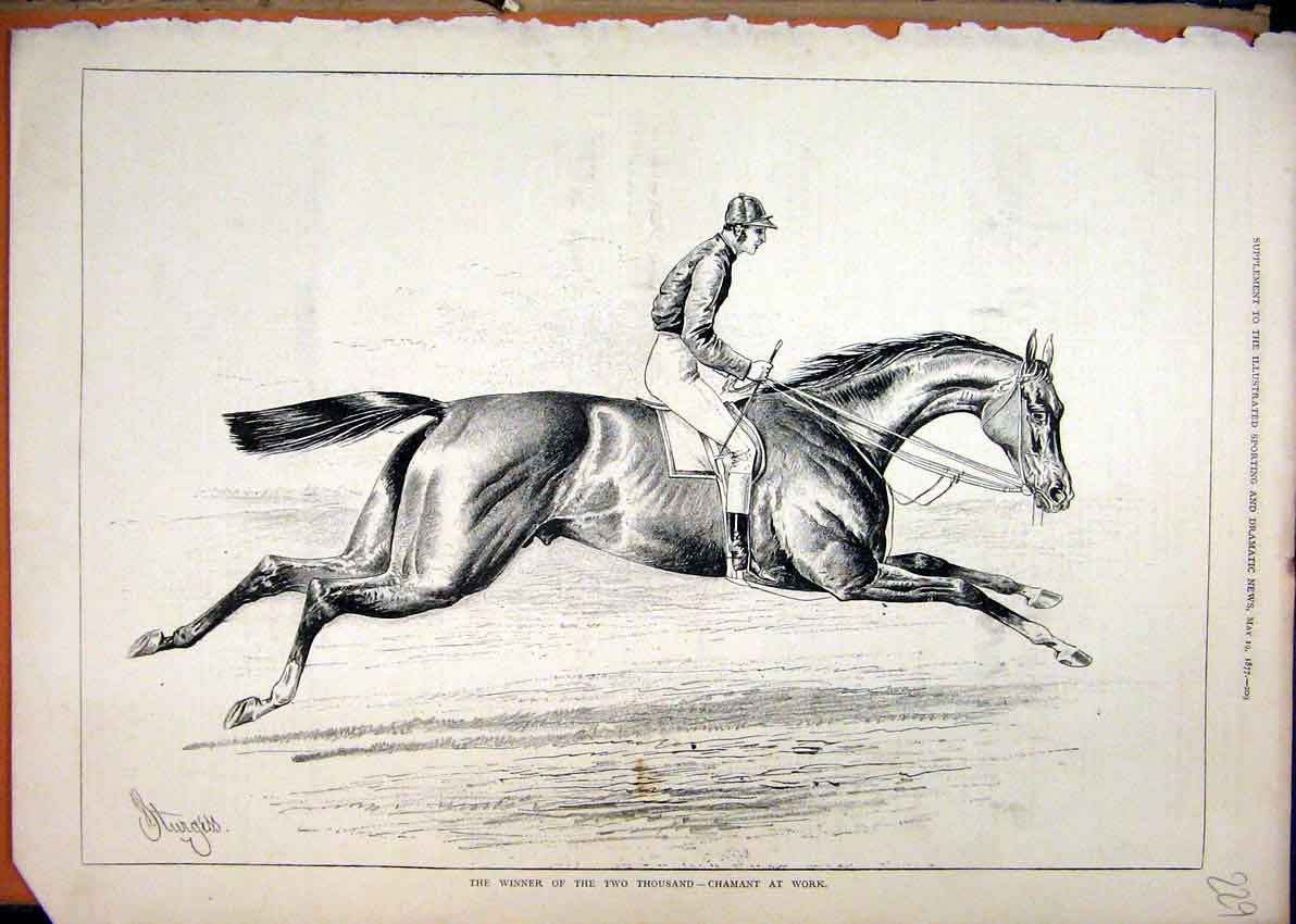 Print 1877 Horse Winner Two Thousand Chamant Work 29Mar1 Old Original