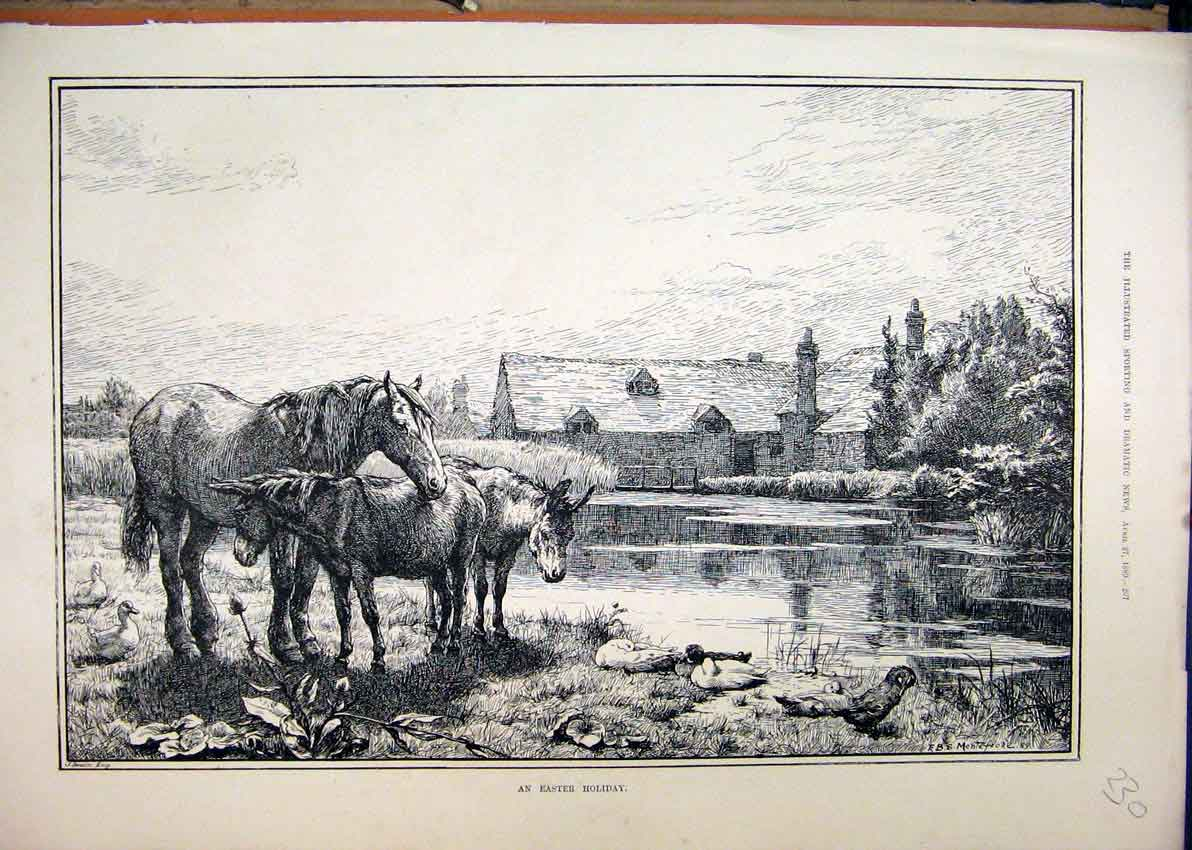 Print 1889 Horse Donkey Ducks River Building Country Scene 30Mar1 Old Original