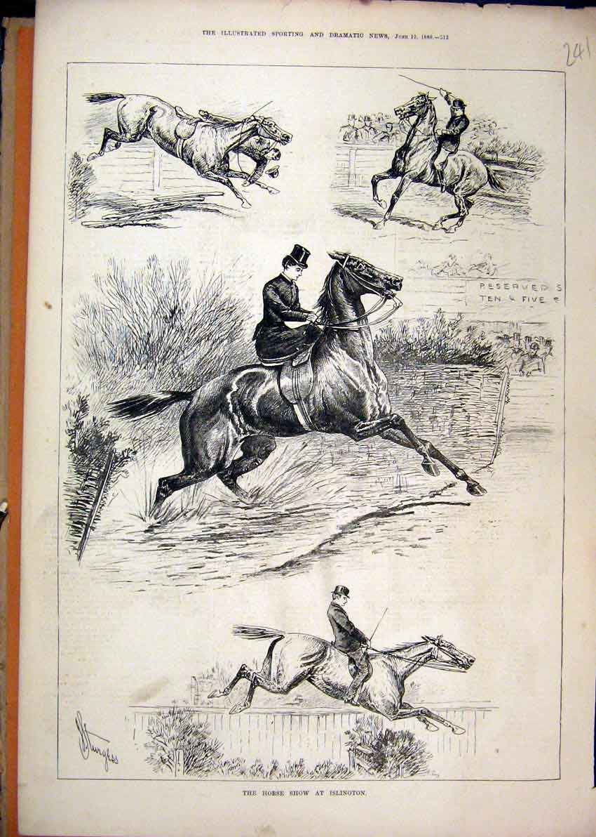 Print 1880 Horse Show Islington Woman Rider Jumping Falling 41Mar1 Old Original
