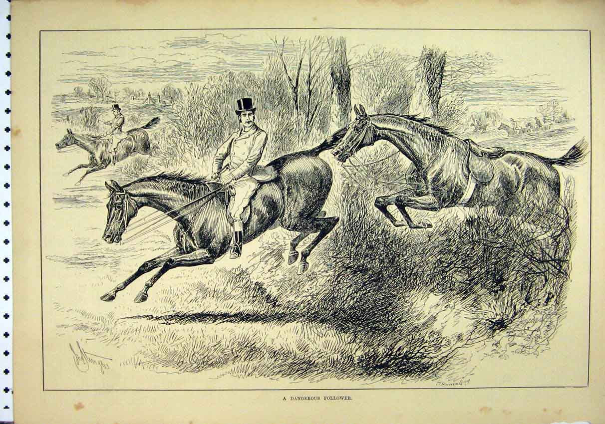 Print 1885 Horse Juping Hedge Rider Fallen Trees Country 30Mar1 Old Original