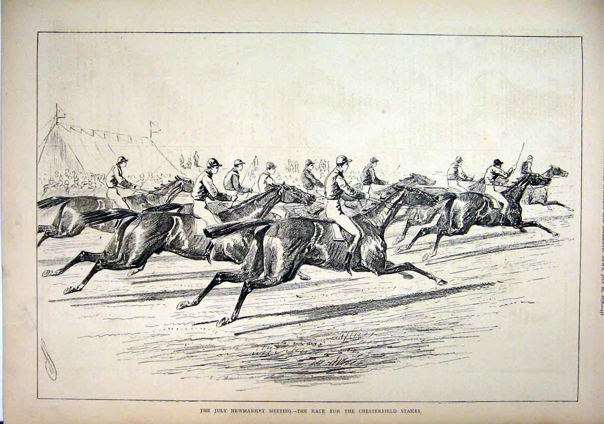 Print 1878 Newmarket Meeting Chesterfield Stakes Race Horses 02Mar1 Old Original