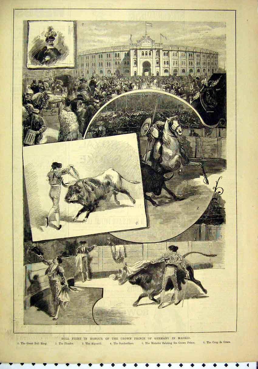 Print Bull Fight Crown Prince Germany Madrid 1884 Picador 15Mar1 Old Original