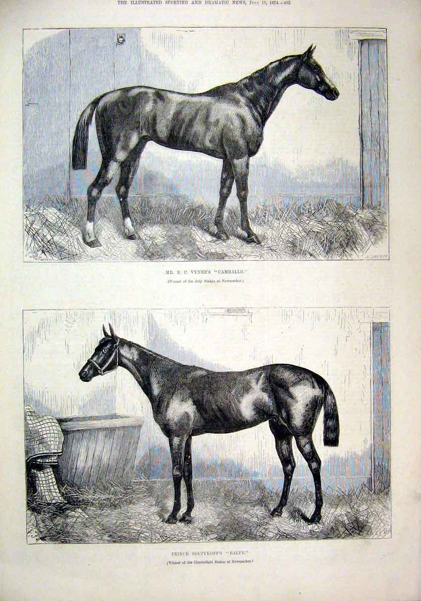 Print Horses 1874 Vyners Camballo Soltykoff Balfe Newmarket 42Mar1 Old Original