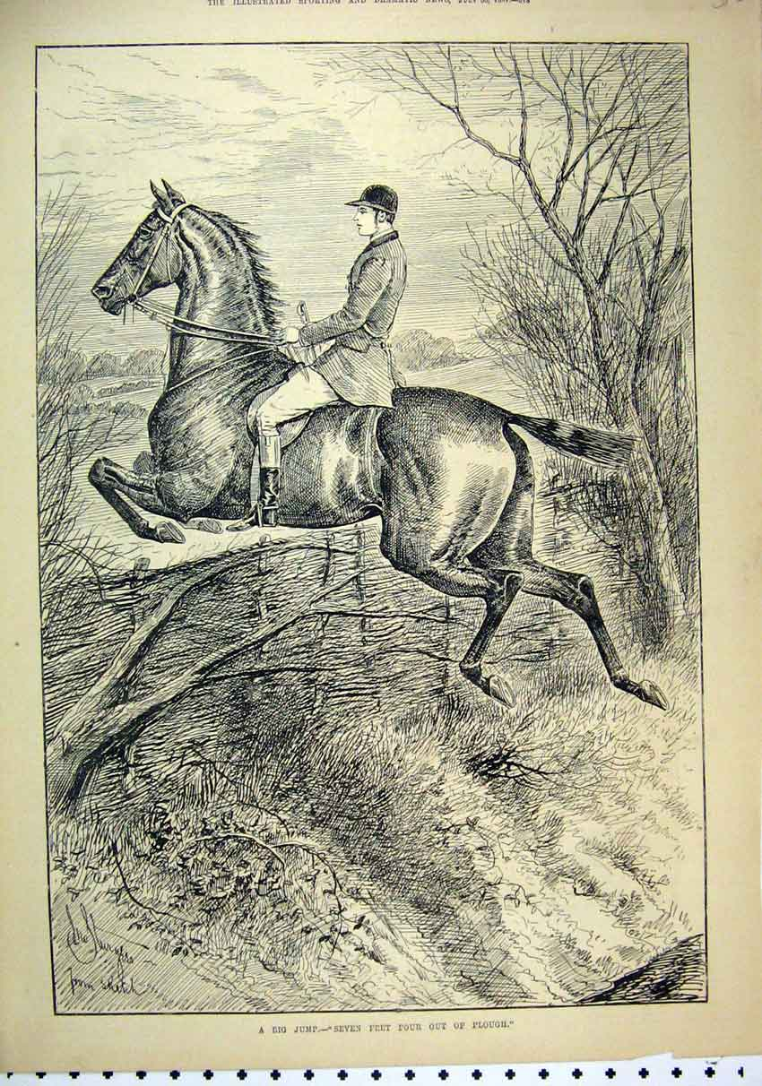 Print 1887 Man Horse Jumping Big Fence Tree Country Scene 15Mar1 Old Original