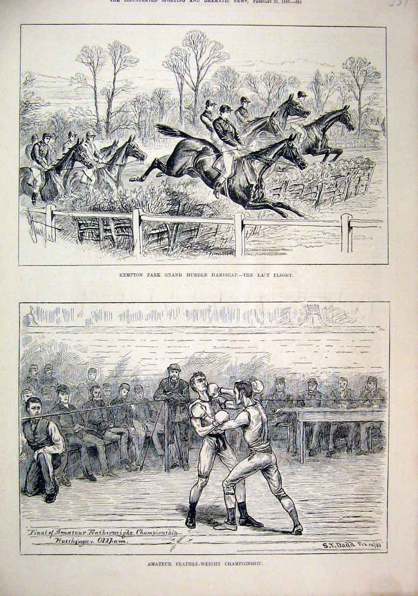Print Amateur Feather-Weight Boxing 1880 Kempton Horse Hurdle 59Mar1 Old Original