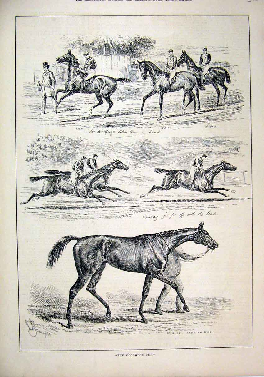 Print 1884 Horse Racing Goodwood Cup St Simon Friday 65Mar1 Old Original