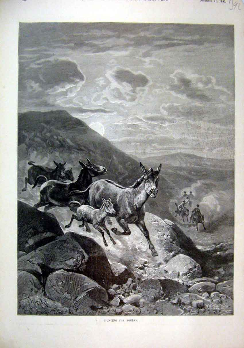 Print Hunting Koulan 1895 Horses Cliff Nountain Scene 92Mar1 Old Original