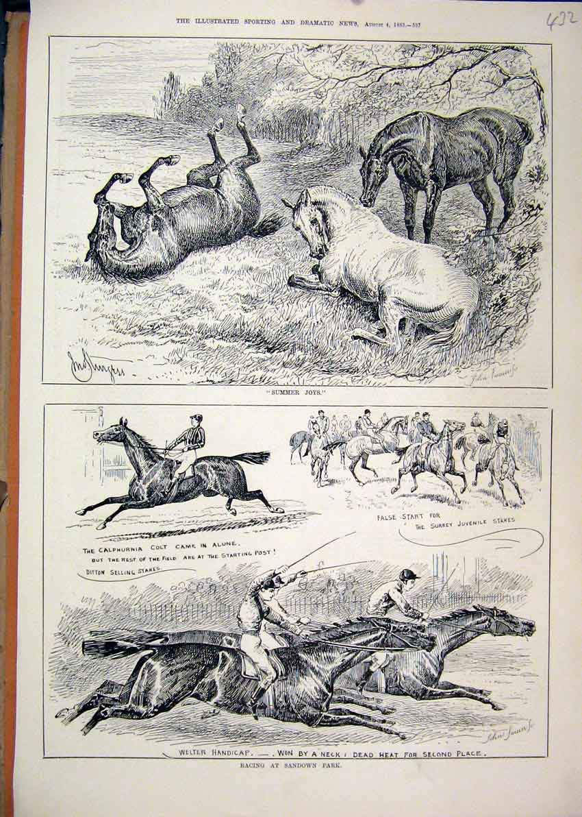 Print 1883 Racing Horses Sandown Park Rolling Field Welter 32Mar1 Old Original
