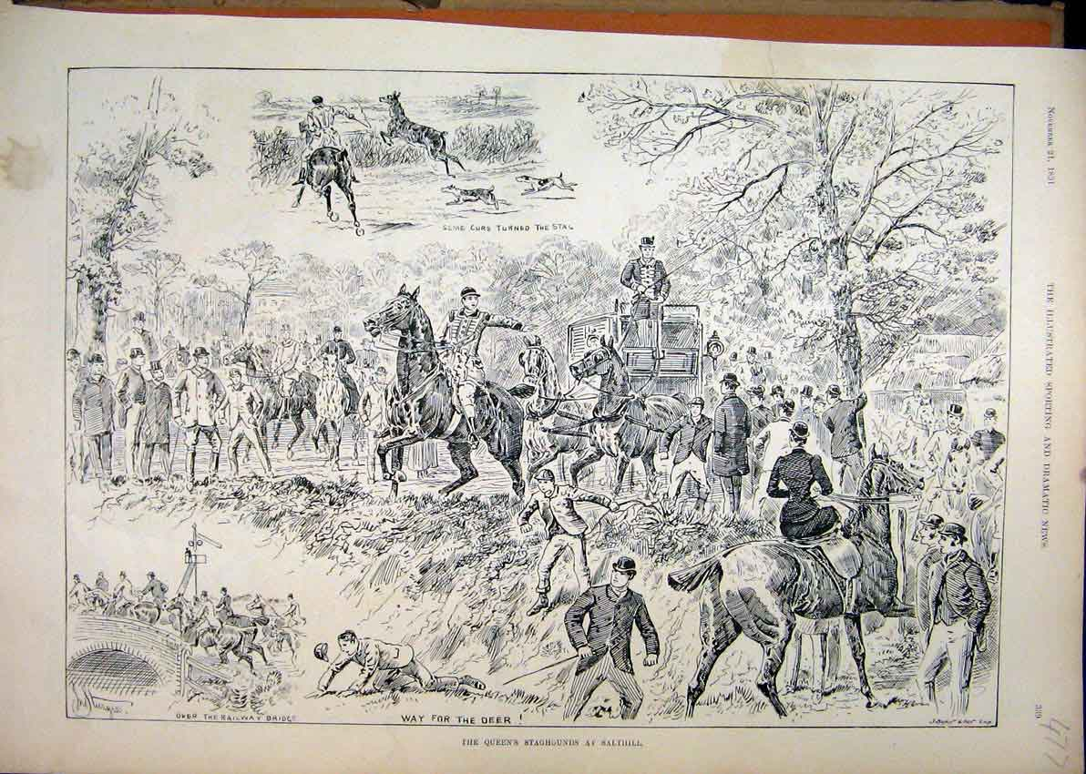 [Print 1891 Queens Staghounds Salthill Dogs Horses Coach 77Mar1 Old Original]