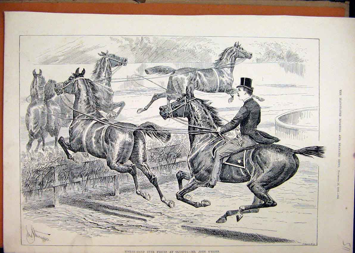 Print Five-In-Hand 1880 Horses Jumping Fences Olympia O'Brien 11Mar1 Old Original