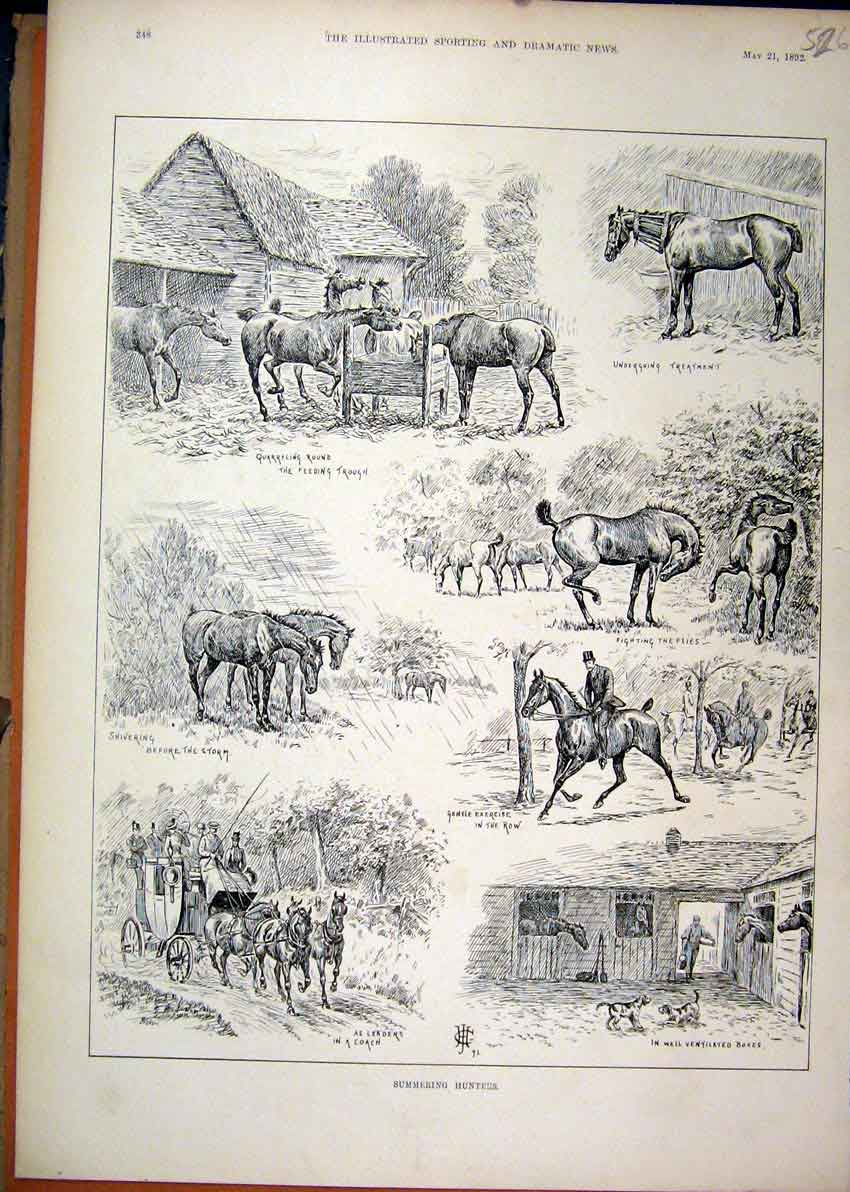 Print 1892 Summer Hunters Horses Feeding Dog Stable Coach 26Mar1 Old Original