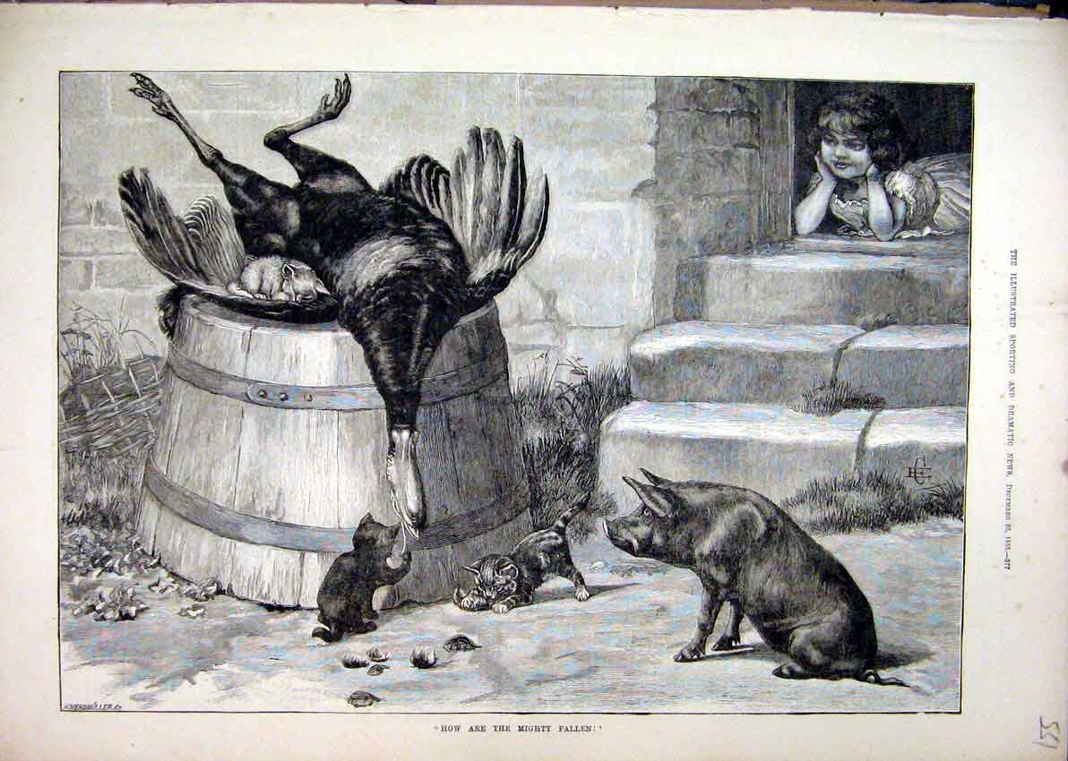 Print 1885 Dead Turkey Pig Kitten Young Girl Doorstep 51Mar1 Old Original