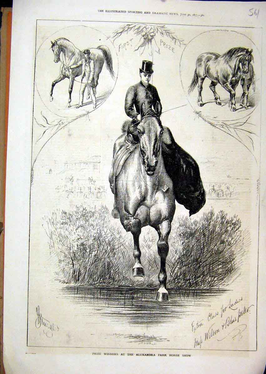 Print 1877 Prize Winners Alexandra Park Horse Show Blue Peter 61Mar1 Old Original