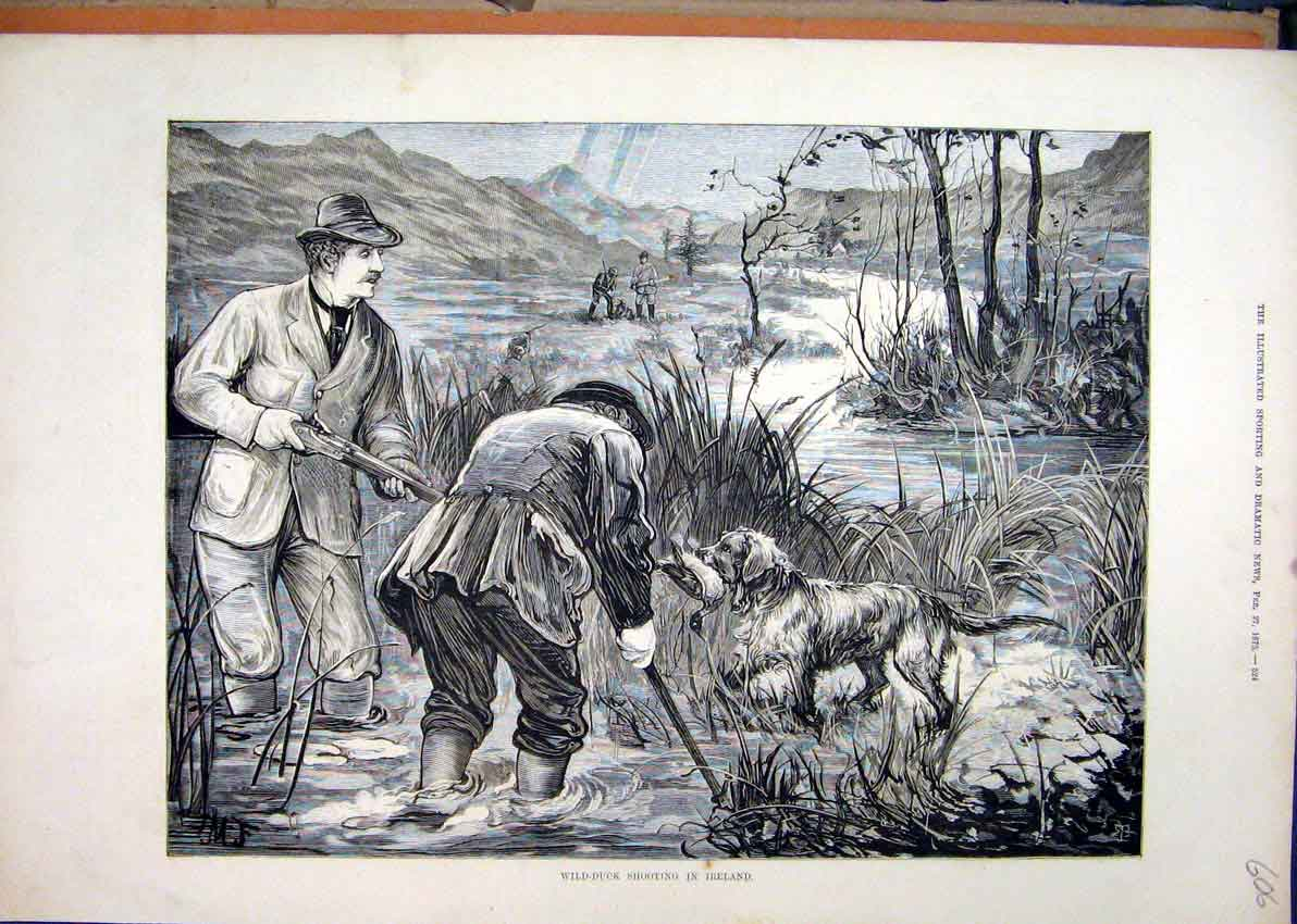 Print 1875 Wild-Duck Shooting Ireland Men Gun Dog Fine Art 06Mar1 Old Original