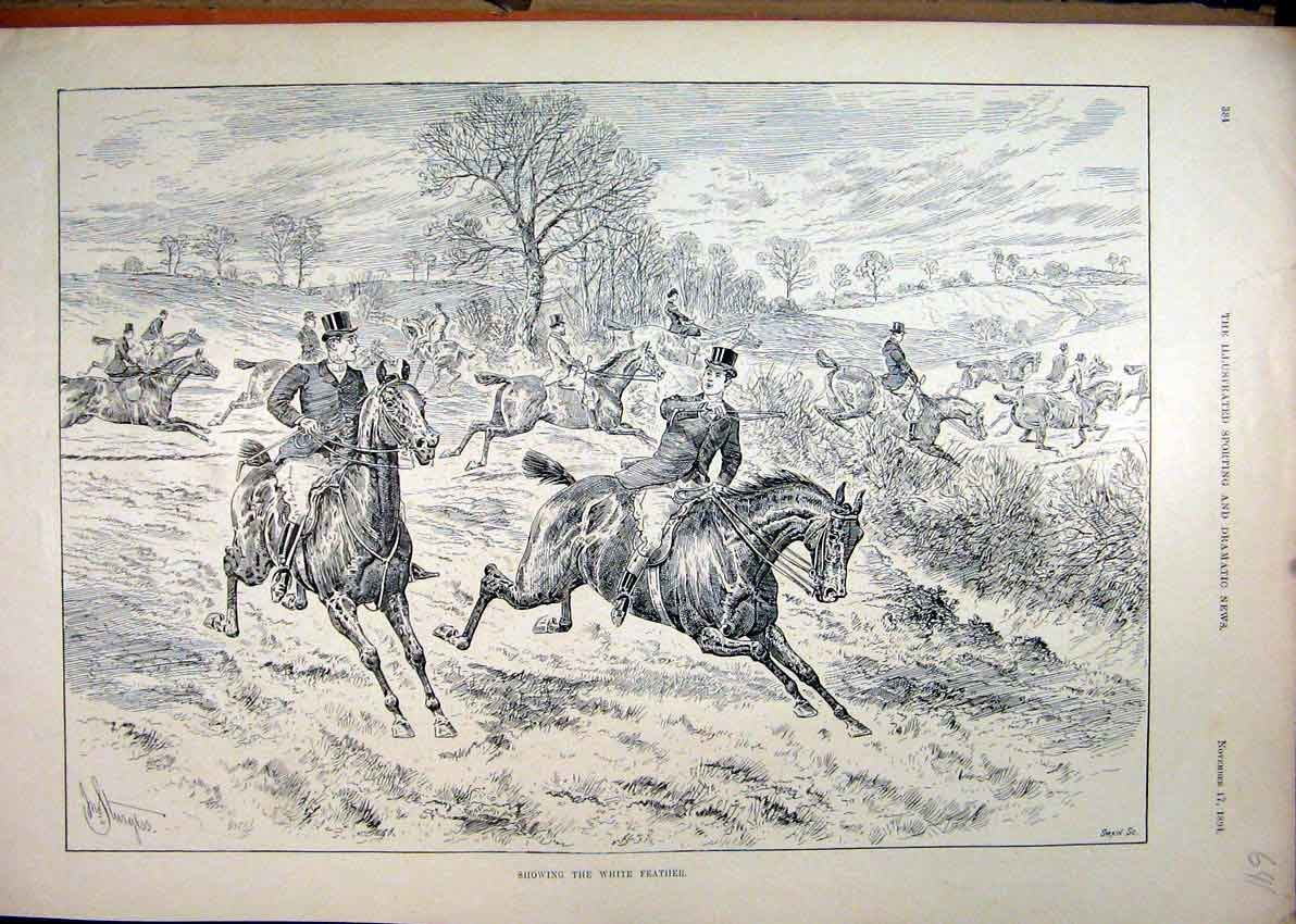 Print 1894 Showing White Feather Horses Jumpinh Hedge Sketch 41Mar1 Old Original
