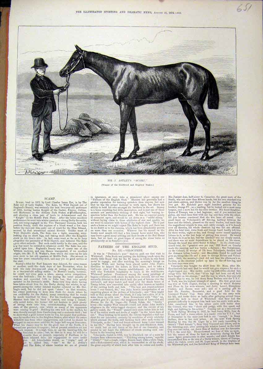 Print 1874 Color Sir Astley Scamp Winner Goodwood 52Mar1 Old Original