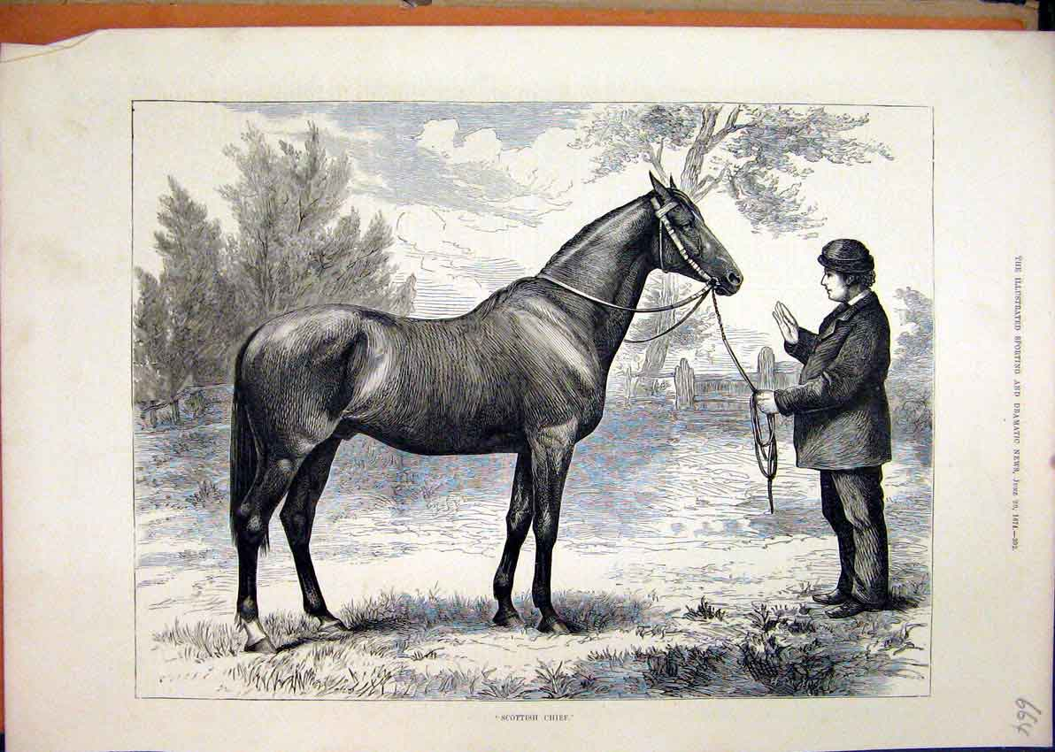 Print 1874 Man Holding Horse Scottish Chief Country 64Mar1 Old Original