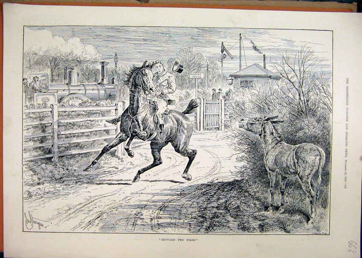 Print 1888 Man Horse Donkey Train Railway 68Mar1 Old Original