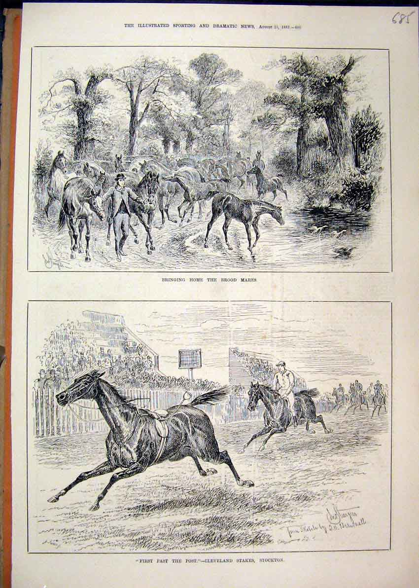 Print 1883 Horses Brood Mares Cleveland Stakes Stockton 85Mar1 Old Original