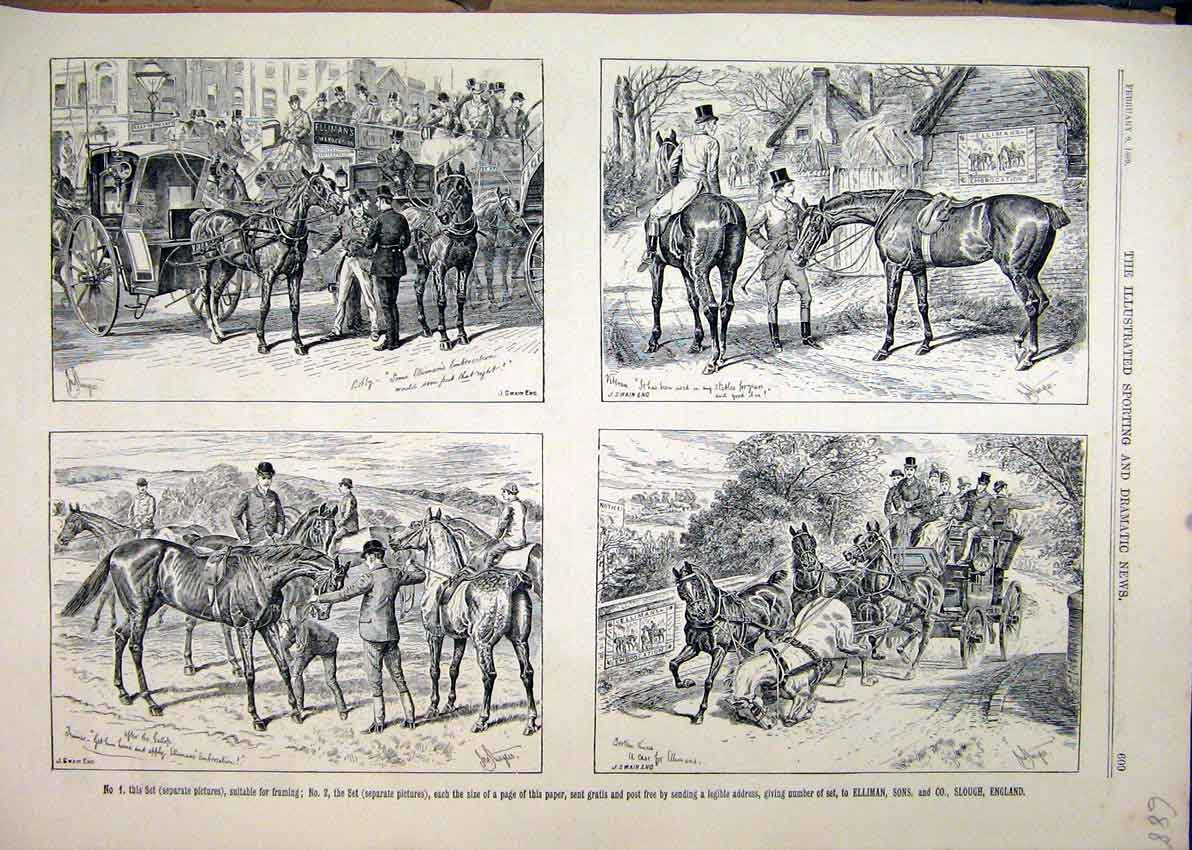 Print 1889 Advert Ellimans Embrocation Horse Coach Sketches 88Mar1 Old Original