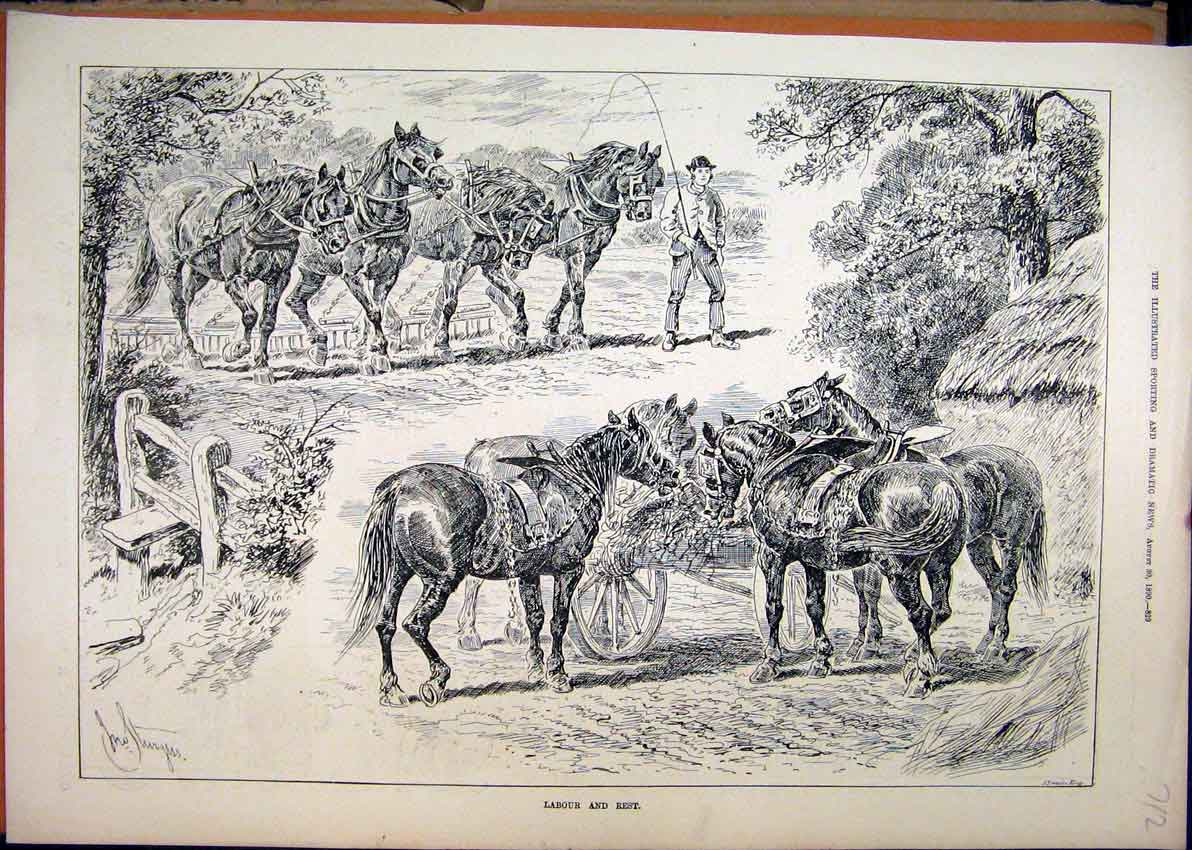 Print Cart Horses Ploughing 1890 Eating Cart Country Scene 12Mar1 Old Original