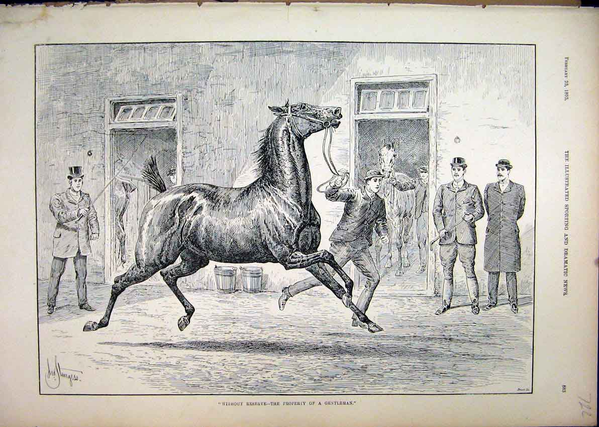 Print 1895 Horse Sale Man Leading Running Stable 22Mar1 Old Original