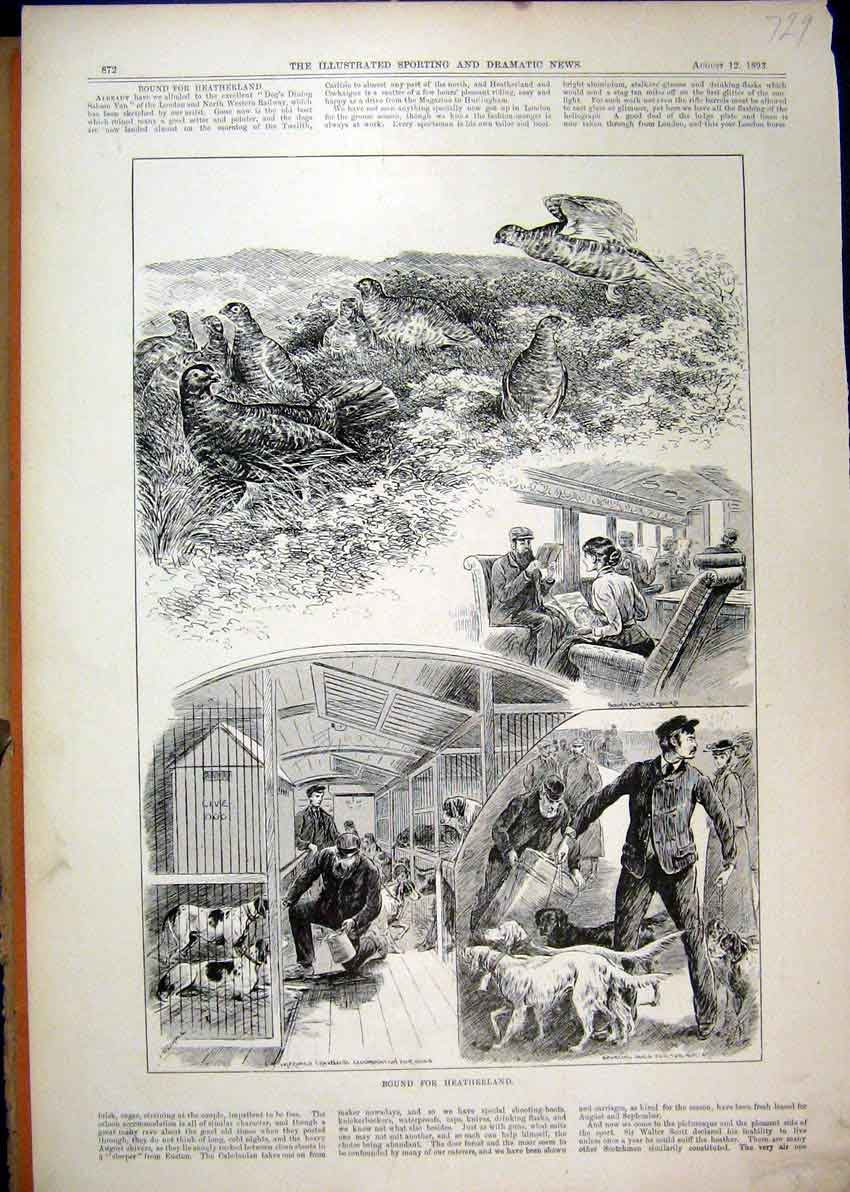 Print 1893 Grouse Train Carriage Dogs Kennels Heatherland 29Mar1 Old Original