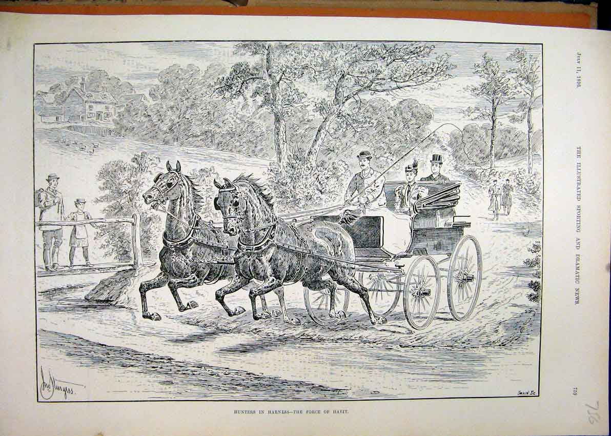 Print 1896 Horses Hunters Harness Coach Country Lane 56Mar1 Old Original