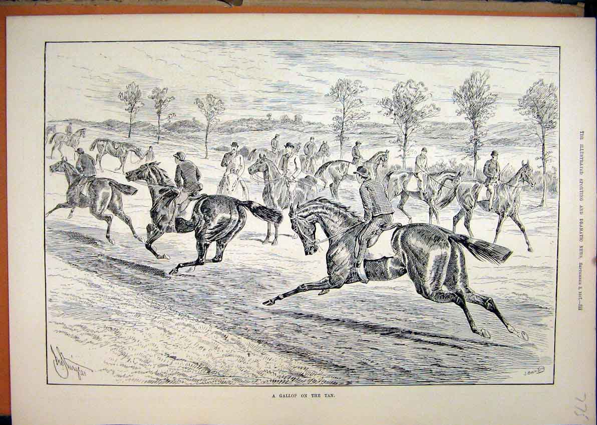 Print Gallop Tan 1887 Men Horses Field Country Scene 75Mar1 Old Original
