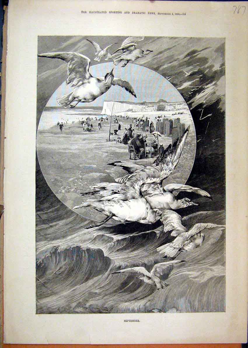 Print September Beach Scene 1886 Birds Cliffs Stormy Sea 87Mar1 Old Original