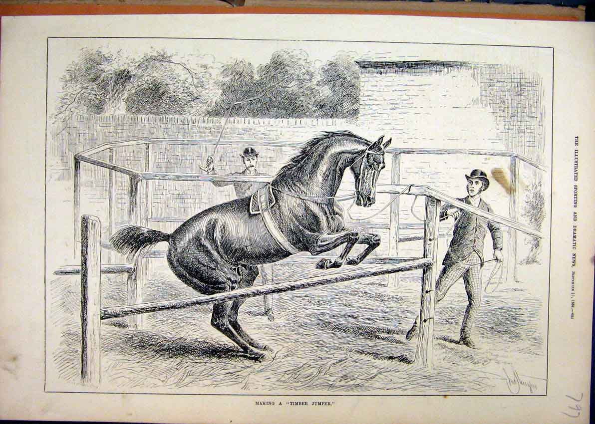 Print Timber Jumper 1884 Horse Training Men 97Mar1 Old Original