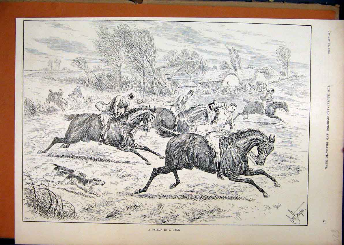 Print Horse Men 1895 Gallop Gale Wind Jumping Field 25Mar1 Old Original