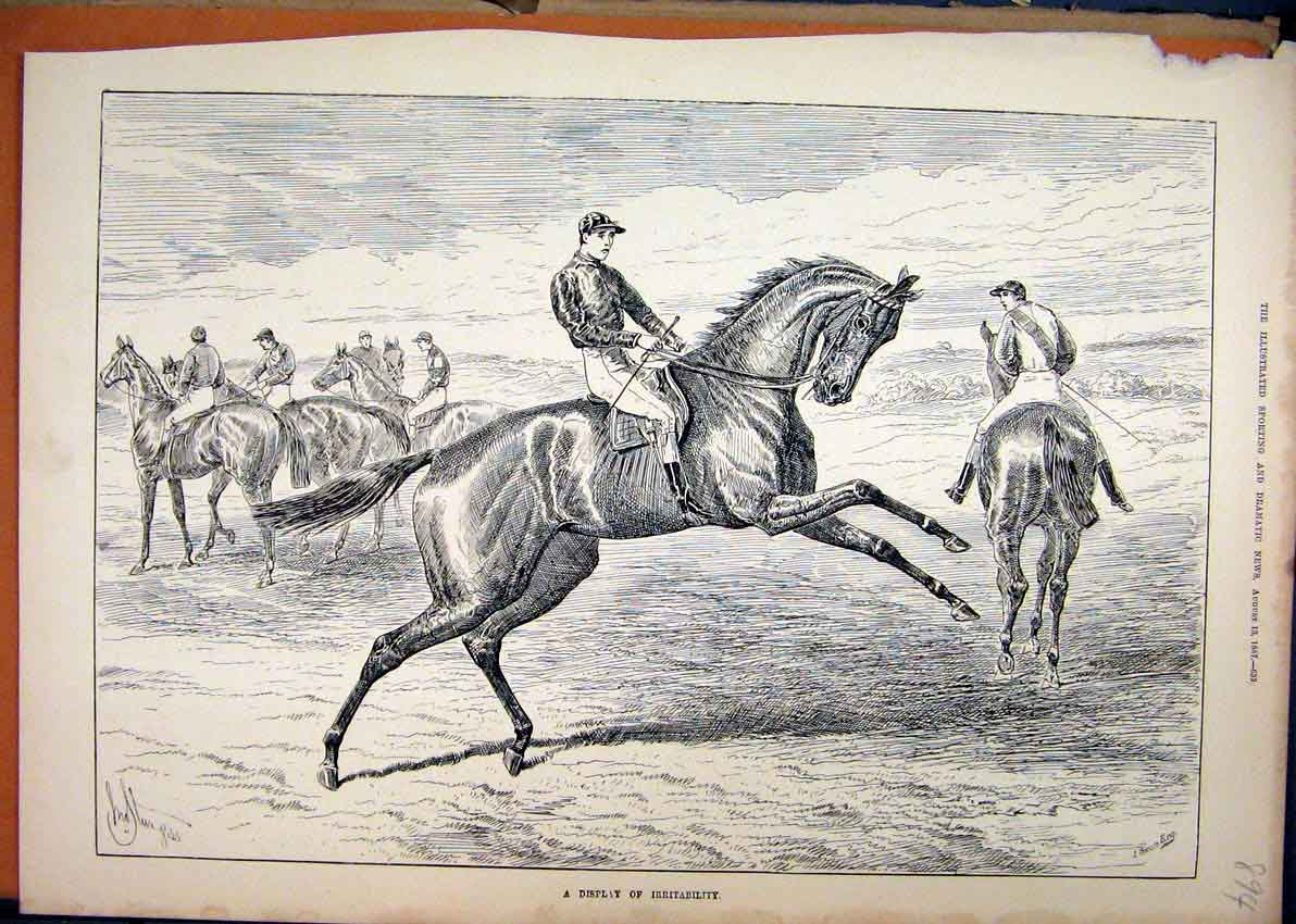 Print 1887 Jockey Race Horses Jumping Country 94Mar1 Old Original