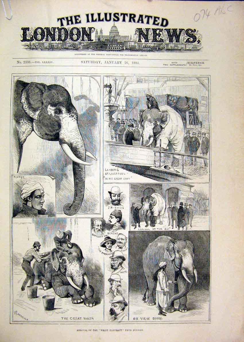Print 1884 White Elephant Burmah Railway Horse Zoo Coach 07Mar1 Old Original