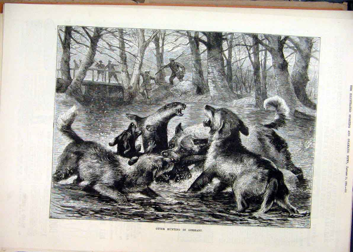 [Print Otter Hunting Germany 1884 Dogs River Men 25Mar1 Old Original]