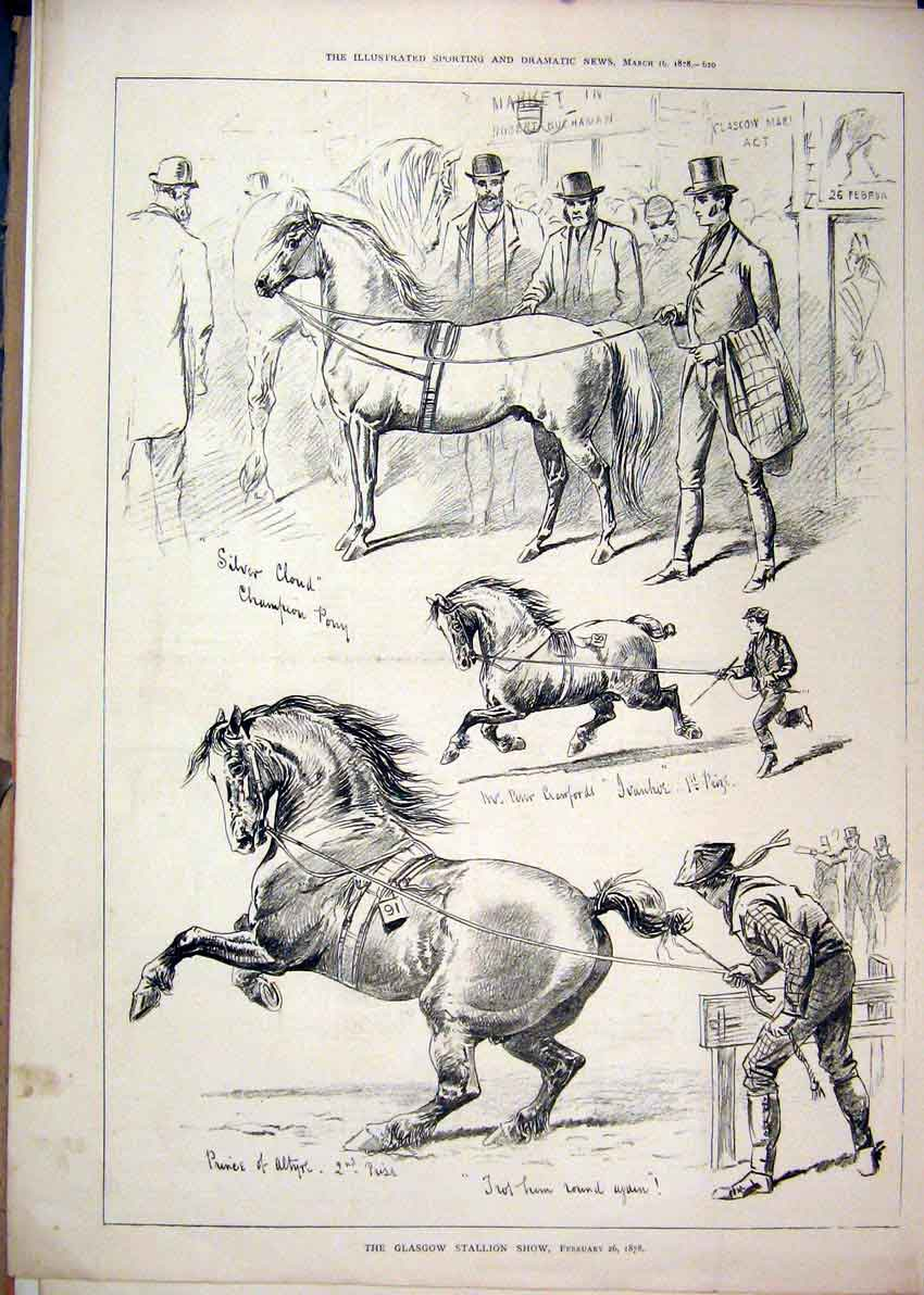 Print 1878 Glasgow Stallion Show Horses Silver Cloud 57Mar1 Old Original