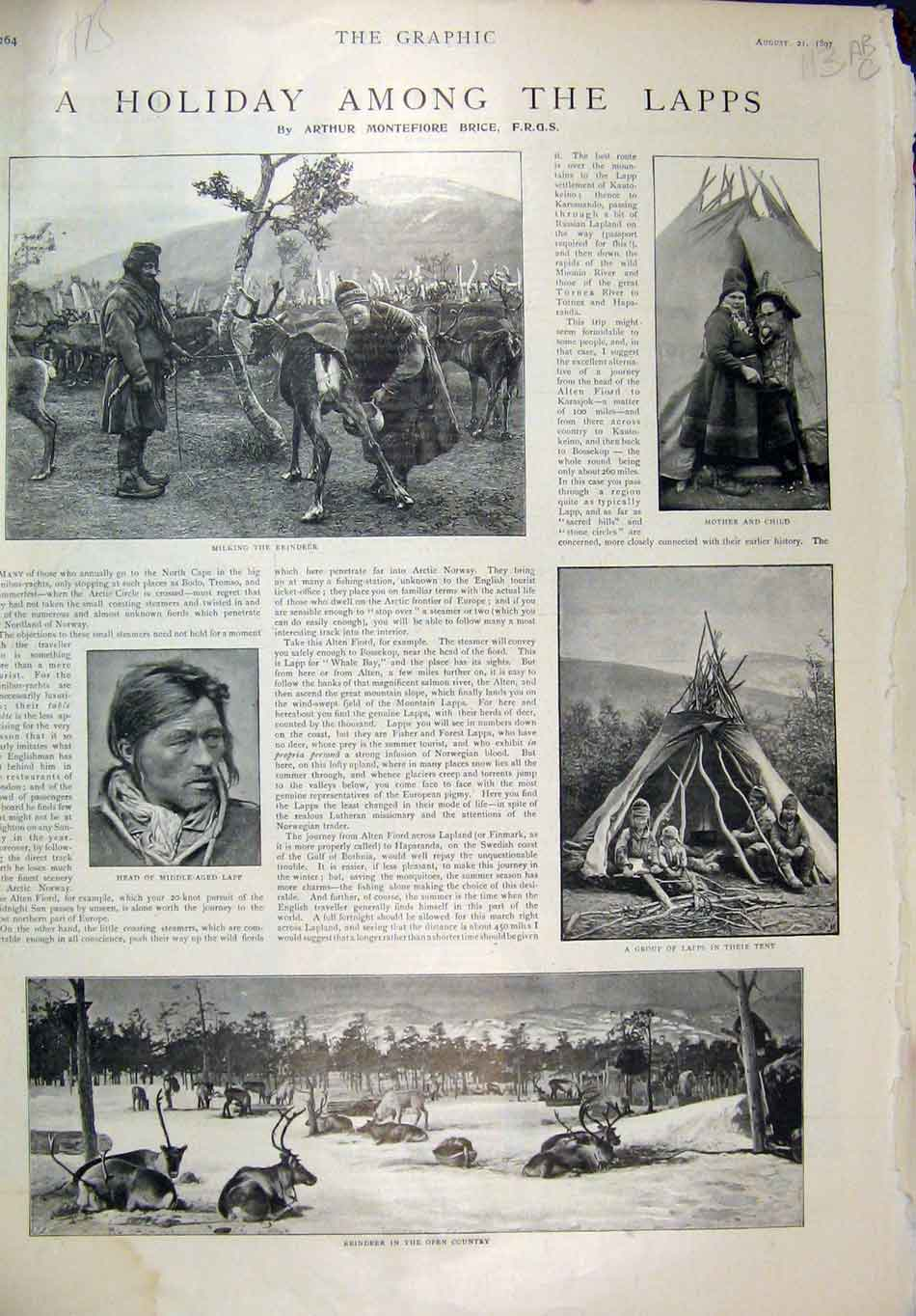 Print Holiday Lapps 1897 Reindeer Tent Peter Rome Leinster 13Mar1 Old Original