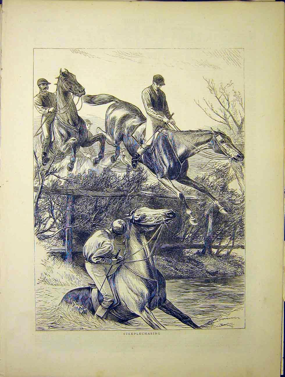 Print Steeplechasing Horses Sketch 1870 66Mbb1 Old Original